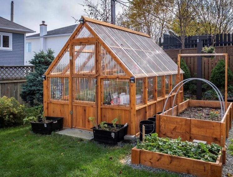 Timber greenhouse in garden made with Onduline ONDUCLAIR sheets