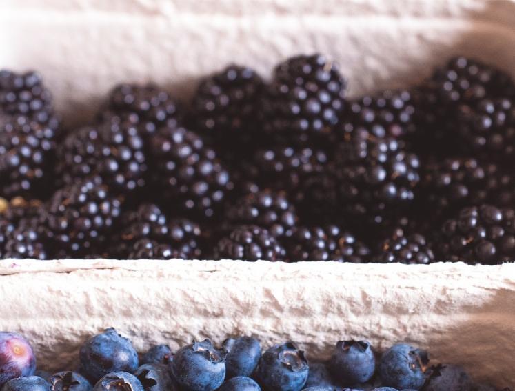 Homegrown berries from garden